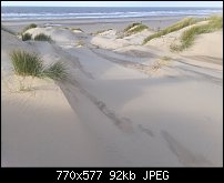 Click image for larger version.  Name:dunes again.jpg Views:45 Size:92.1 KB ID:121229