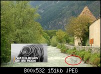 Click image for larger version.  Name:Glorenza with water bear.jpg Views:48 Size:150.8 KB ID:124714