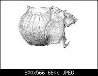 Click image for larger version.  Name:Dürer 4-5.jpg Views:30 Size:66.1 KB ID:129109