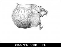 Click image for larger version.  Name:Dürer 4-5.jpg Views:16 Size:66.1 KB ID:129247