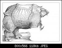 Click image for larger version.  Name:Dürer 4-8.jpg Views:18 Size:118.4 KB ID:129333