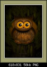 Click image for larger version.  Name:my little owl.jpg Views:217 Size:57.5 KB ID:107334
