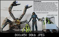 Click image for larger version.  Name:cheladean-shells.jpg Views:16 Size:98.2 KB ID:130268