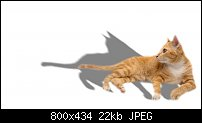 Click image for larger version.  Name:cat3.jpg Views:42 Size:22.1 KB ID:125578
