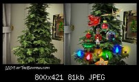 Click image for larger version.  Name:2009 tree.jpg Views:160 Size:81.2 KB ID:92933