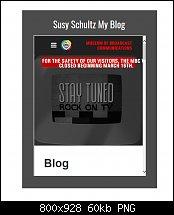 Click image for larger version.  Name:WordPress Blog.jpg Views:20 Size:60.4 KB ID:127071
