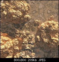 Click image for larger version.  Name:hostile-terrain02-small.jpg Views:2 Size:209.1 KB ID:125165