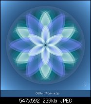 Click image for larger version.  Name:Blue Water Lily.jpg Views:158 Size:239.2 KB ID:105105