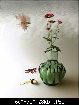 Click image for larger version.  Name:Flowers _in_ September.jpg Views:369 Size:27.6 KB ID:84275