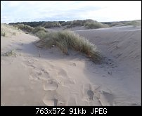 Click image for larger version.  Name:formby dunes.jpg Views:36 Size:90.9 KB ID:121225