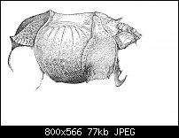 Click image for larger version.  Name:Dürer 4-6.jpg Views:67 Size:76.8 KB ID:129263