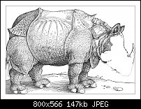 Click image for larger version.  Name:Dürer 4-11.jpg Views:31 Size:146.7 KB ID:130669