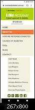 Click image for larger version.  Name:RD Mobile Menu Page.jpg Views:30 Size:32.1 KB ID:126033