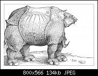 Click image for larger version.  Name:Dürer 4-9.jpg Views:36 Size:134.5 KB ID:129990