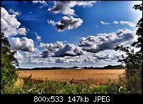 Click image for larger version.  Name:wheat-field.jpg Views:68 Size:146.7 KB ID:125014