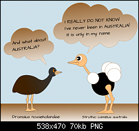Click image for larger version.  Name:emu.png Views:246 Size:69.6 KB ID:106985