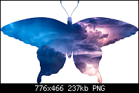 Click image for larger version.  Name:butterfly frame.png Views:14 Size:237.0 KB ID:126637