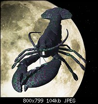 Click image for larger version.  Name:lobster-fore.jpg Views:15 Size:104.0 KB ID:129981